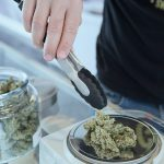 Legal Marijuana or CBD – Helping You Boost Your Reliability