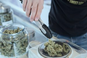 Read more about the article Legal Marijuana or CBD – Helping You Boost Your Reliability